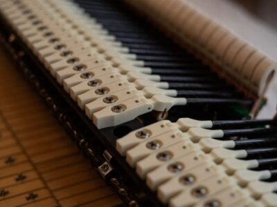 使用iglidur材料的凤凰钢琴